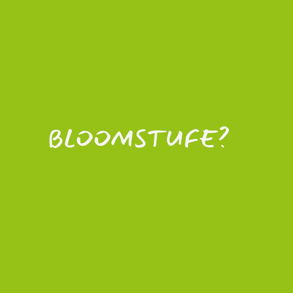 Bloomstufe?